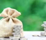 Review Bibit Reksadana: Apakah Tempat Terbaik untuk Investasi?